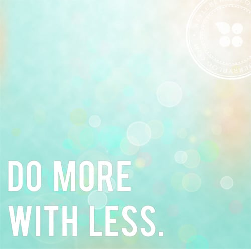 do more with less_styleberry
